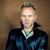 Sting (Стинг) - Shape Of My Heart постер